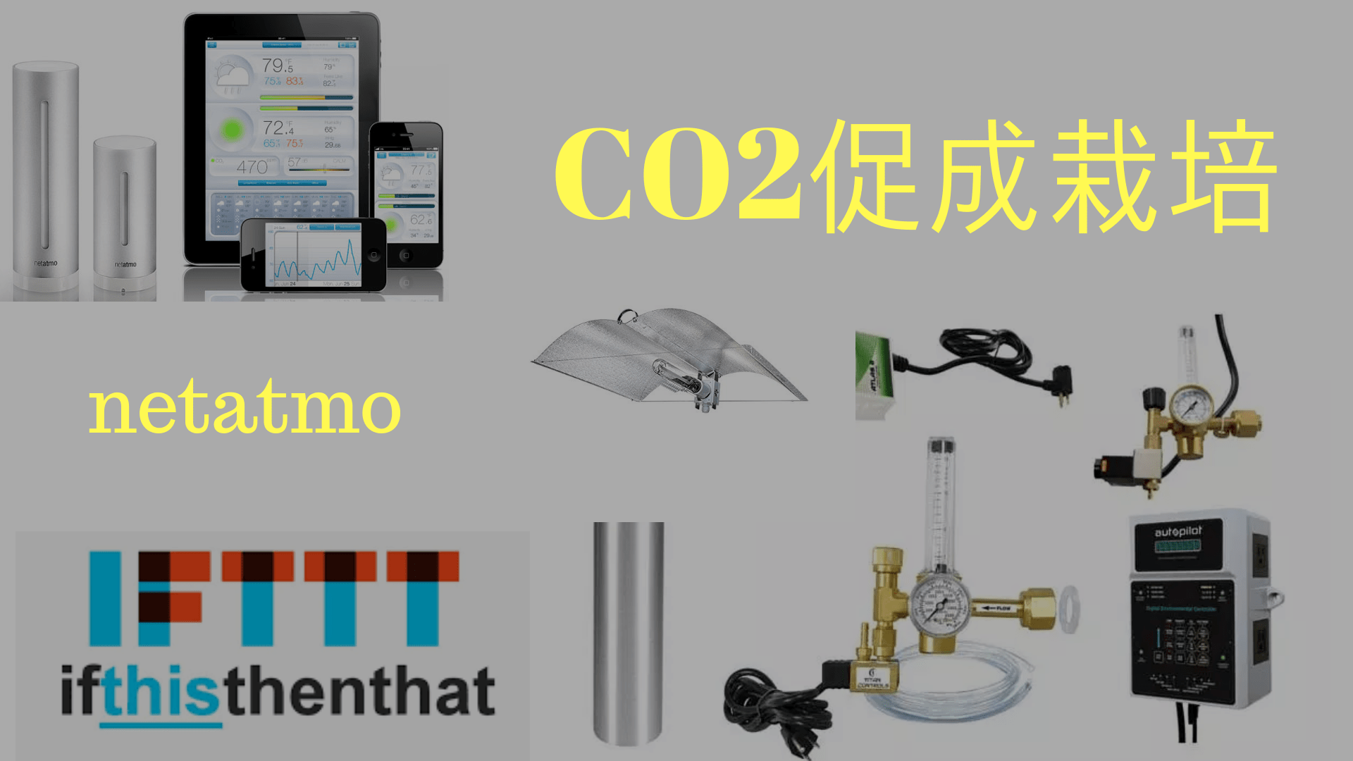 大麻に二酸化炭素をあげる方法。CO2促成栽培。そしてnetatmo