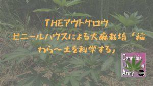 THEアウトグロウ ビニールハウスによる大麻栽培 「稲わら〜土を科学する」